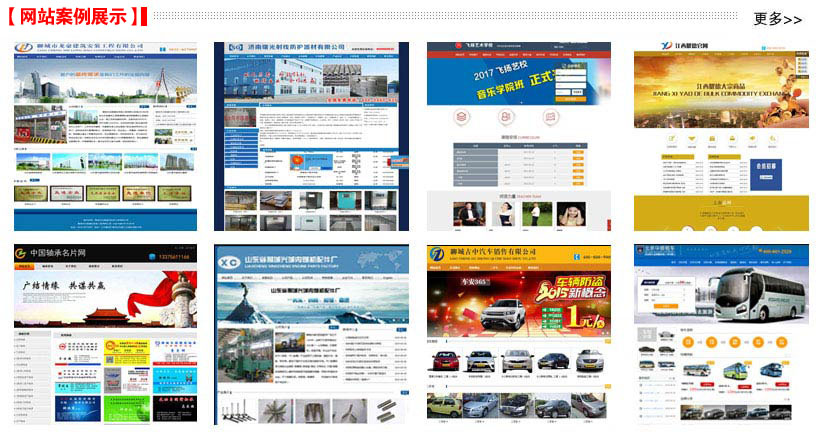 网站建设及网站优化精典案例展示
